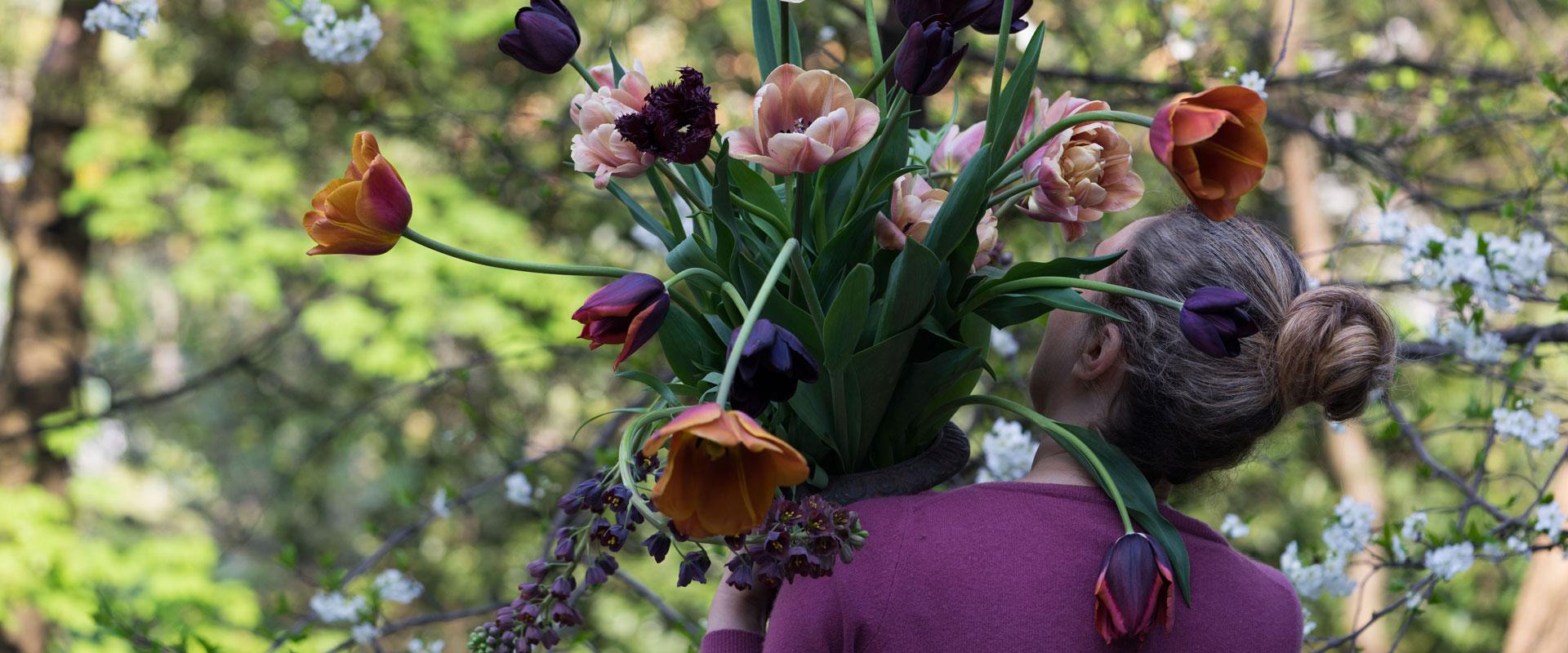 Coltivare Fiori Da Recidere olga's flower farm | floricoltura giussani - eupilio